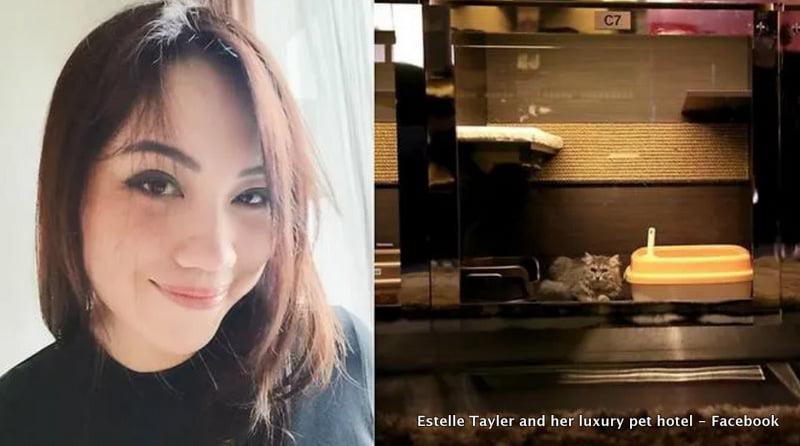 Estelle Tayler and her luxury pet hotel