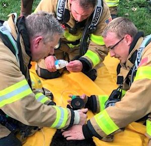 Three firefighters attend to a cat rescued from a fire caused by lighting