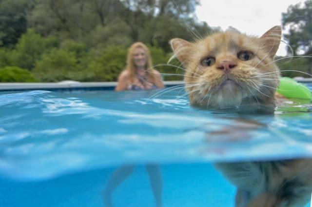 Tissy in the pool