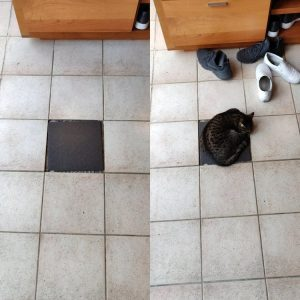 Dark spotted tabby cat sleeps on dark tile surrouded by lighter ones