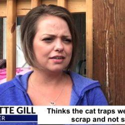 Bridgette Gill's cat traps stolen or not