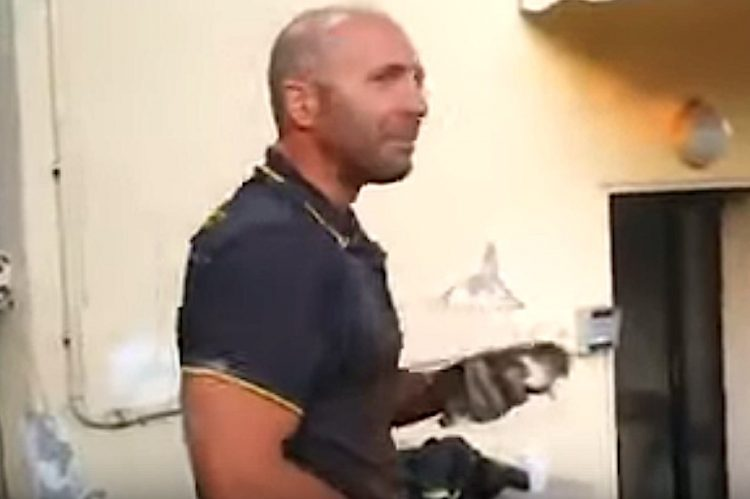 Firefighter cries with kitten