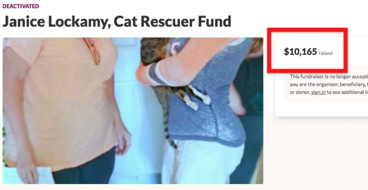 Fundraiser for Janice's cats