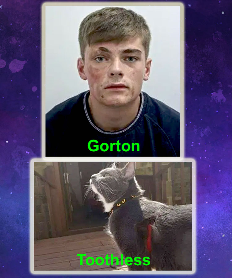 Gorton and Toothless