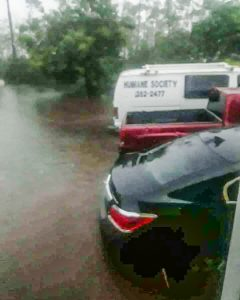 Humane Society of Grand Bahama under water during Hurricane Dorian