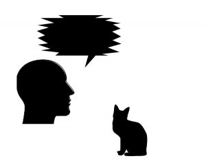 Language used is important in the human to cat relationship