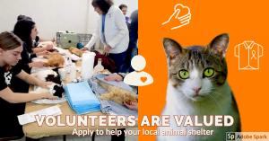 Volunteers are valued