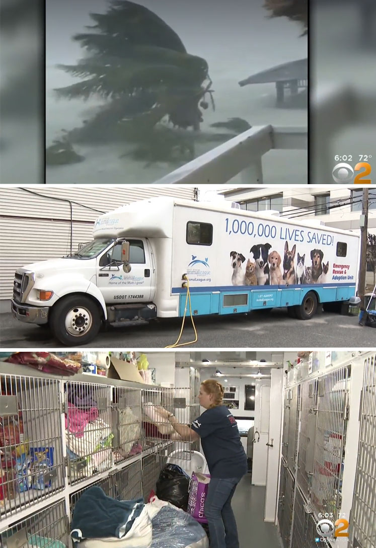 North Shore Animal League take supplies to shelters in path on Hurricane Dorian