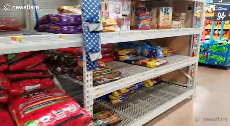 Pet food cleared from shelves before arrival of Hurricane Dorian
