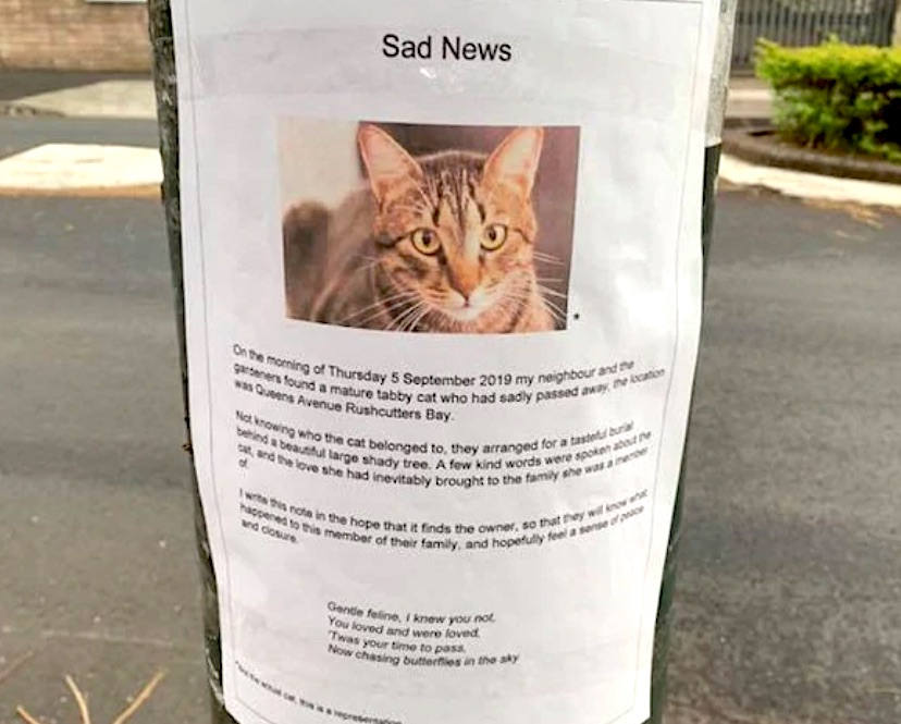 Poster about deceased cat and kind words