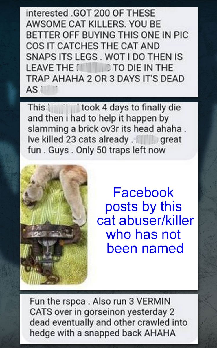 Wales cat abuser and killer's Facebook posts