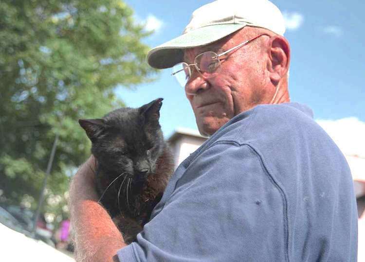 Willie looks after feral cats