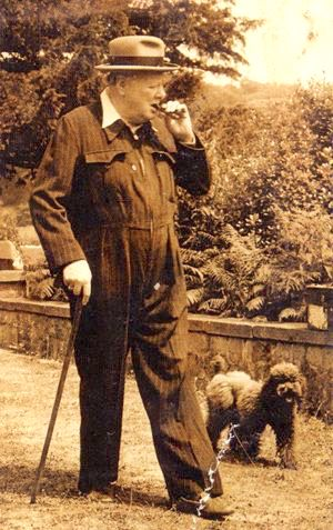 Churchill loved dogs and cats