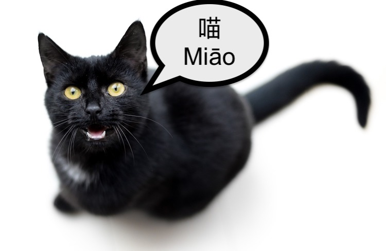 Cat saying meow in Chinese