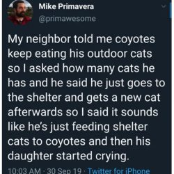 Coyotes eat shelter cats