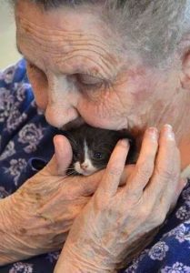 Elderly person and cat