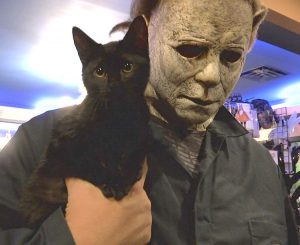Halloween Express. A strange juxtaposition of a cute black rescue cat and a ghoul.
