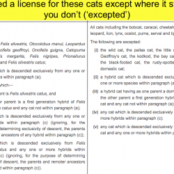 UK law on keeping wildcat hybrid and wild cat species