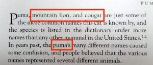 Not capitalising wild cat names in 2002