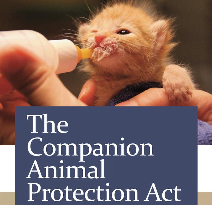 Companion Animal Protection Act