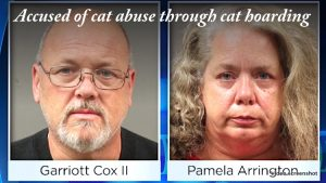 Can you tell from their faces that they are cat abusers?