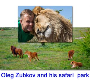Oleg Zubkov with one of his many lions