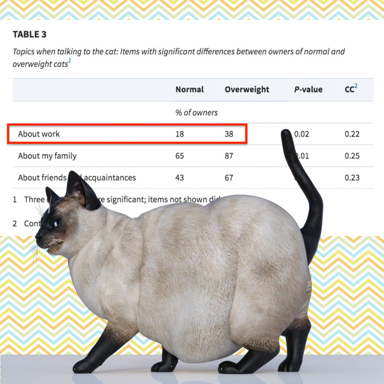 Overweight domestic cats and the reasons why