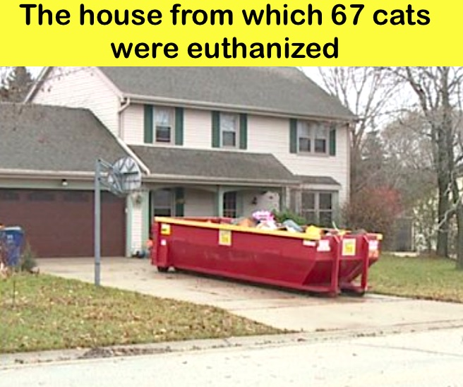 The house were 117 cats lives alone in squalor