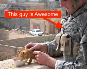 This soldier is awesome as he feeds a stray kitten in a foreign land