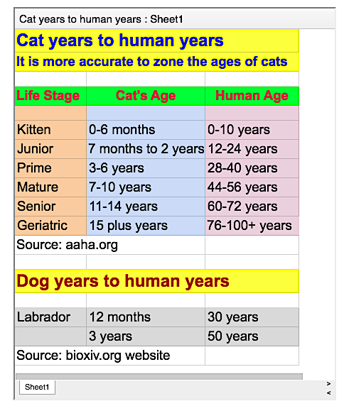 Cat to human years