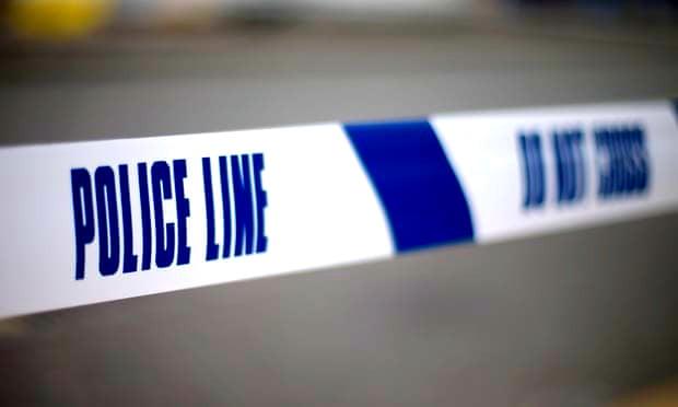 Brighton cat killer charged