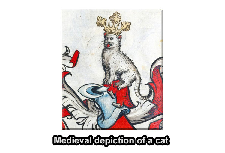 Middle Ages cats