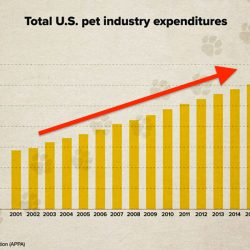 Pet industry growth