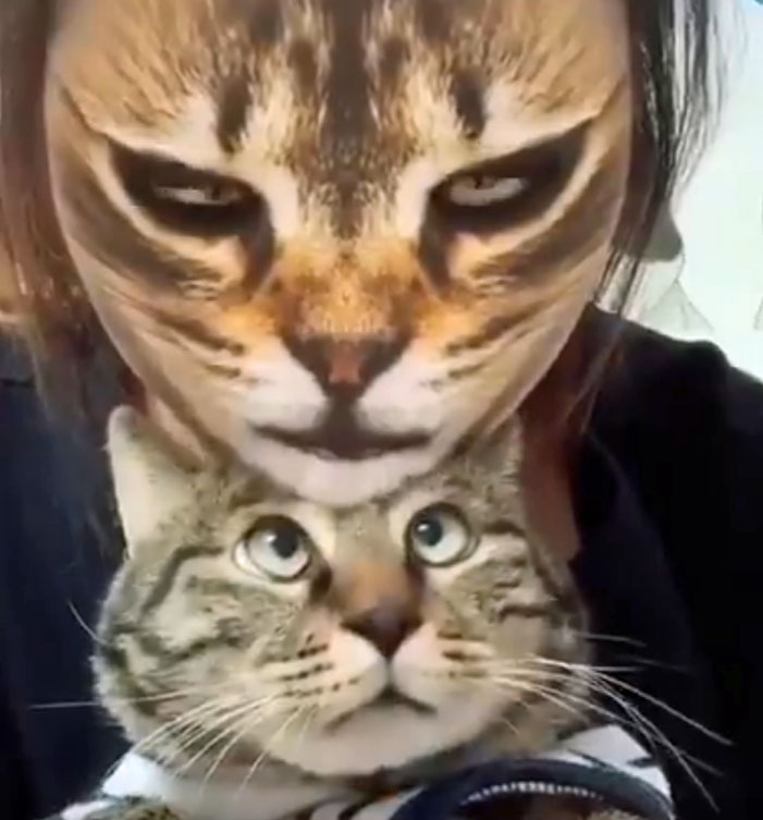 Snapchat filter videos