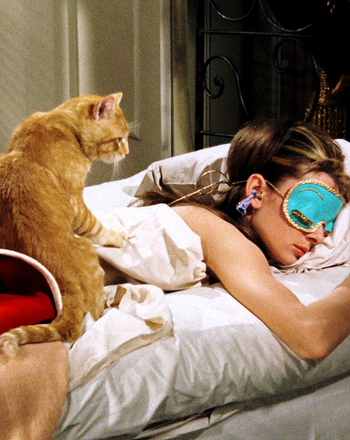 Orangey in Breakfast at Tiffany's with the fabulous Audrey Hepburn