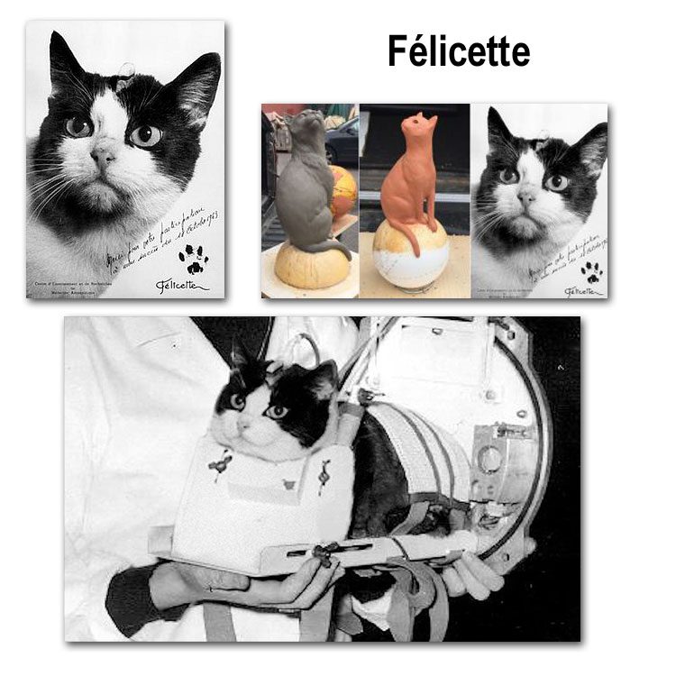 Félicette - showing her portait, preparing the statue and installed in her space capsule.