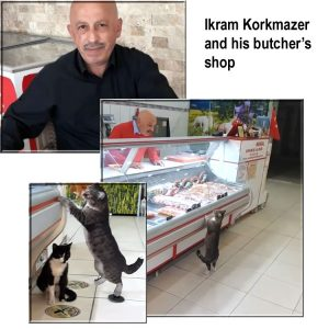 Ikram Korkmazer's butcher's shop