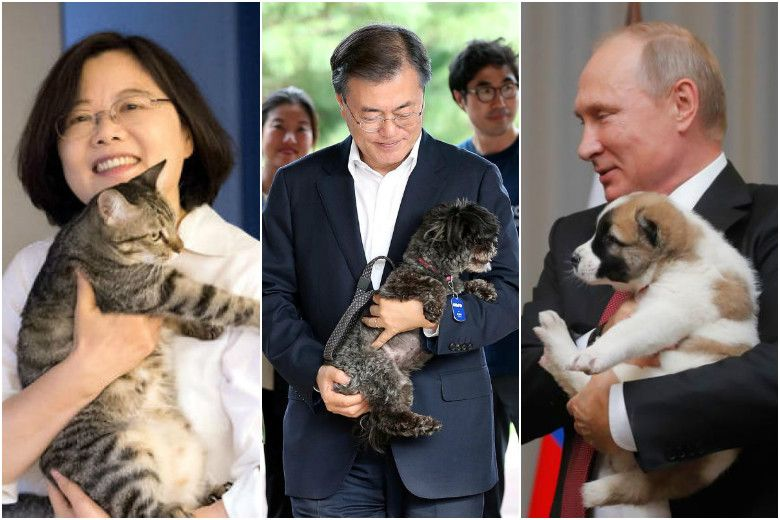 Male leaders and dogs versus President of Taiwan