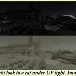 How a cat might see things under UV light