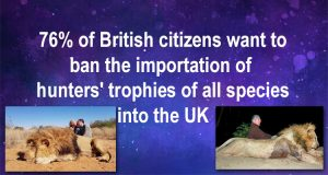 Ban trophy hunted imports into the UK