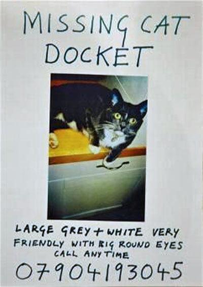 Docket missing poster