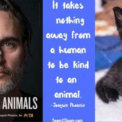 Joaquin Phoenix animal advocate