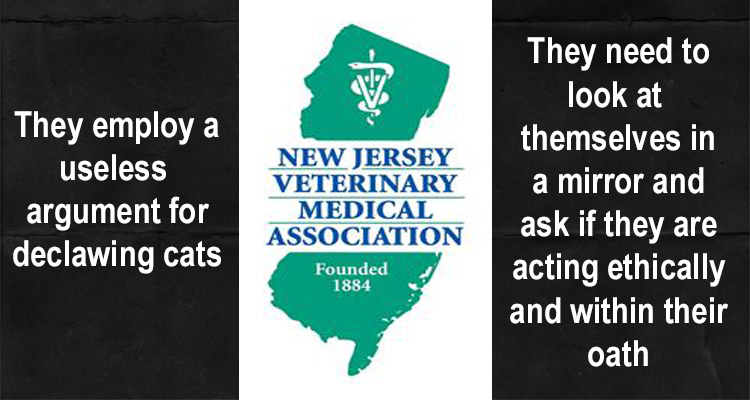 NJ vets have a poor argument as to why they declaw cats