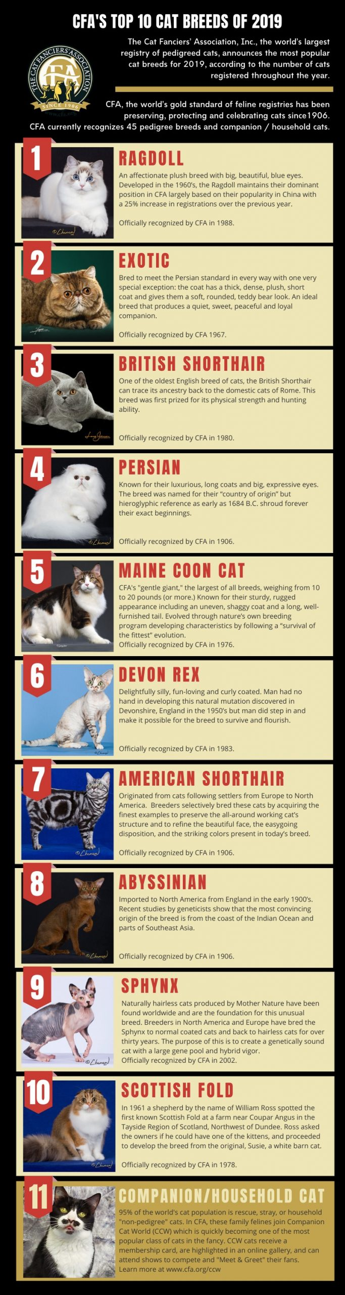 Top 10 cat breeds CFA for 2019