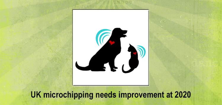 UK microchipping needs improvement