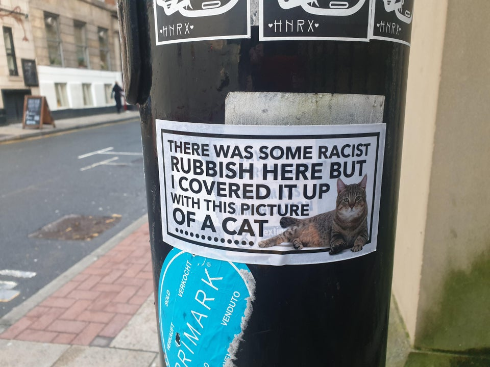 Cat poster covers an unwanted one