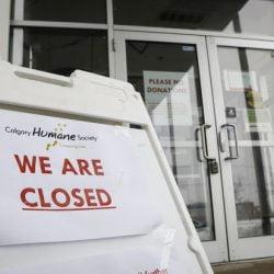 Closed Calgary Humane Society