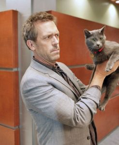Picture of Hugh Laurie and his cat