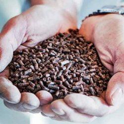 Feedkind pellets
