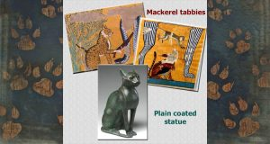 Tabbies of ancient Egypt